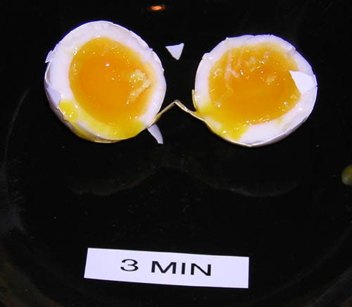egg_3m.jpg
